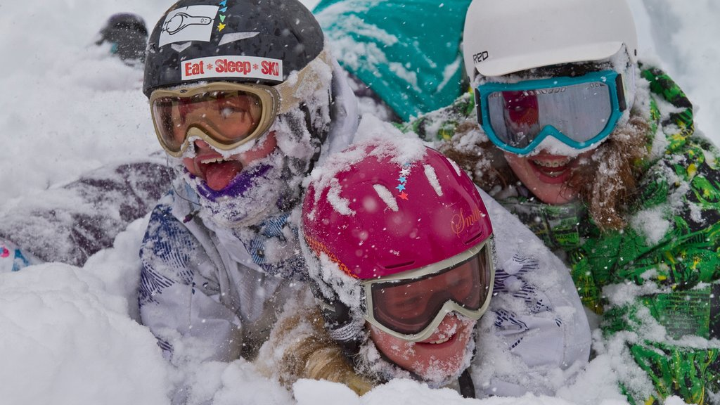 Fernie Alpine Resort which includes snow as well as a small group of people