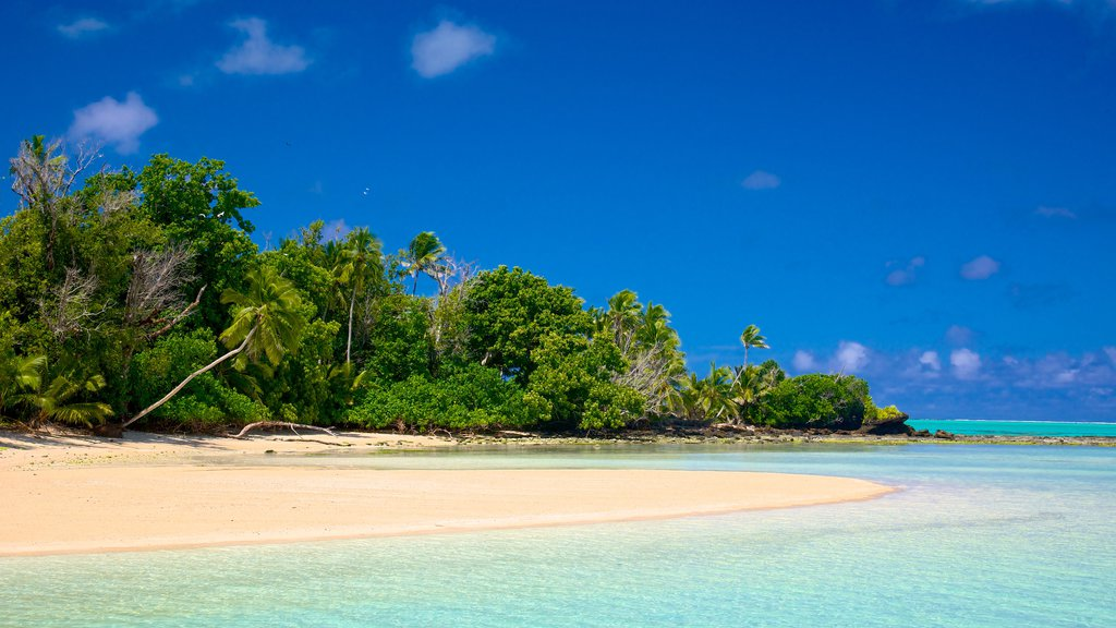 Aitutaki which includes tropical scenes and a sandy beach
