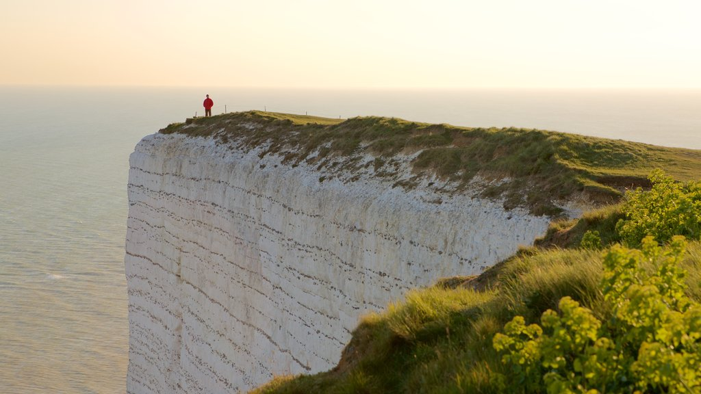 Beachy Head showing general coastal views
