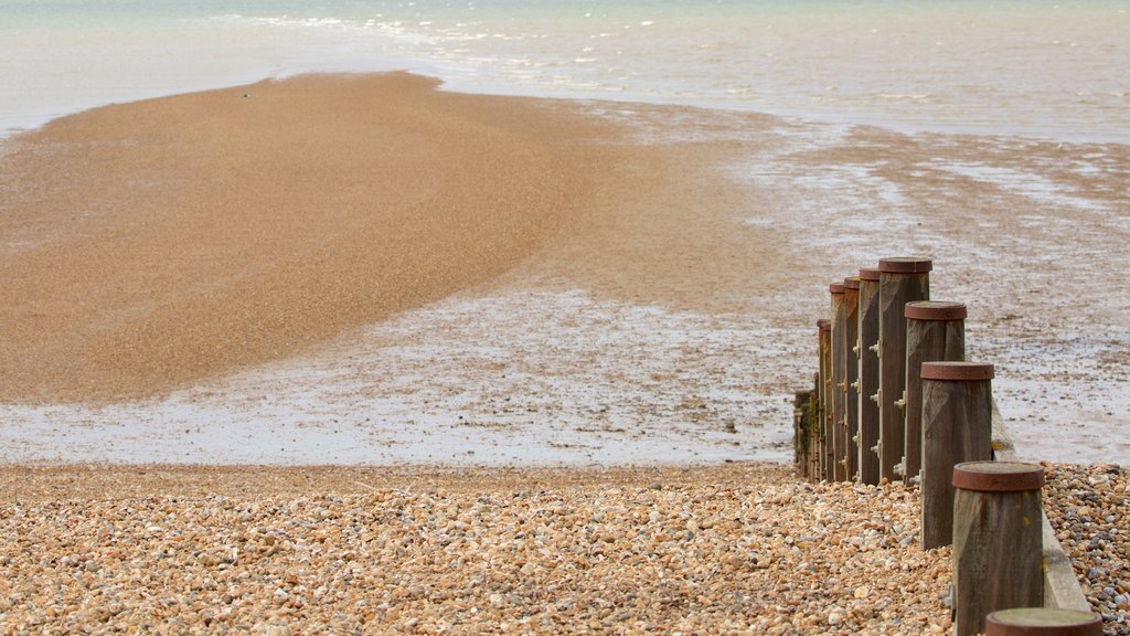 Whitstable Beach featuring a pebble beach