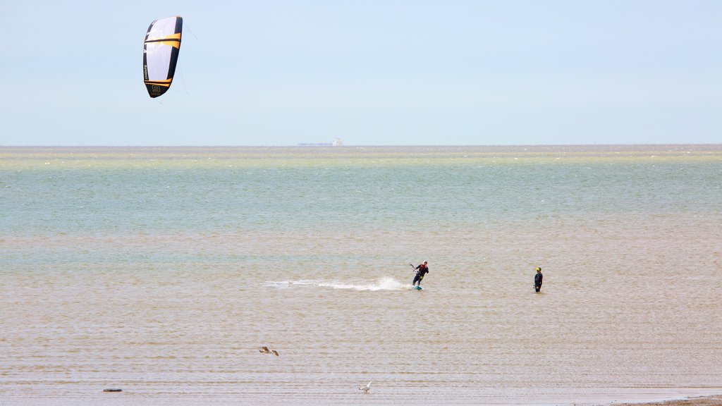 Whitstable Beach featuring general coastal views and kite surfing