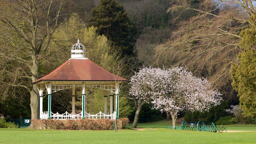 Alexandra Park showing a garden