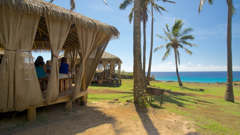 Anakena Beach showing general coastal views and tropical scenes