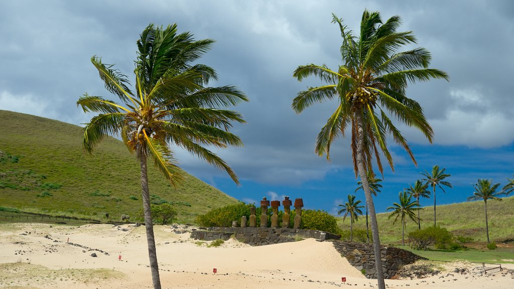 Anakena Beach showing general coastal views