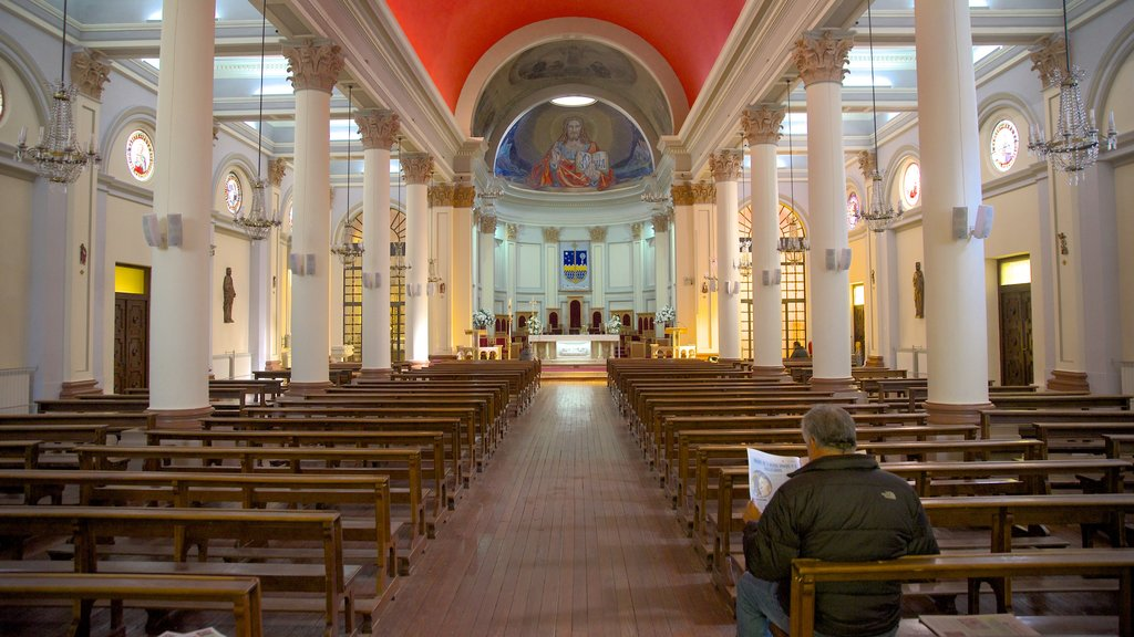 Punta Arenas showing interior views and a church or cathedral as well as an individual male