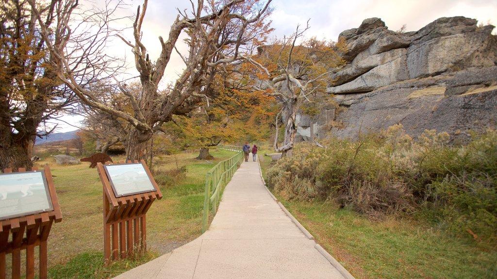 Cueva del Milodon featuring a garden