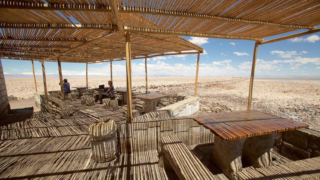 Chaxa Lagoon showing desert views