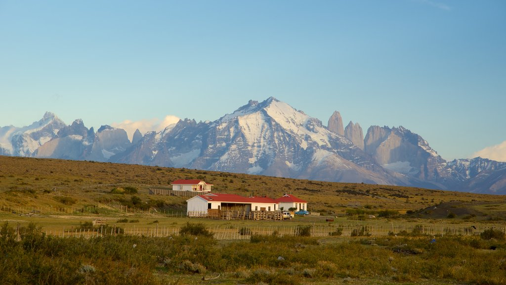 Torres del Paine National Park which includes landscape views, tranquil scenes and mountains