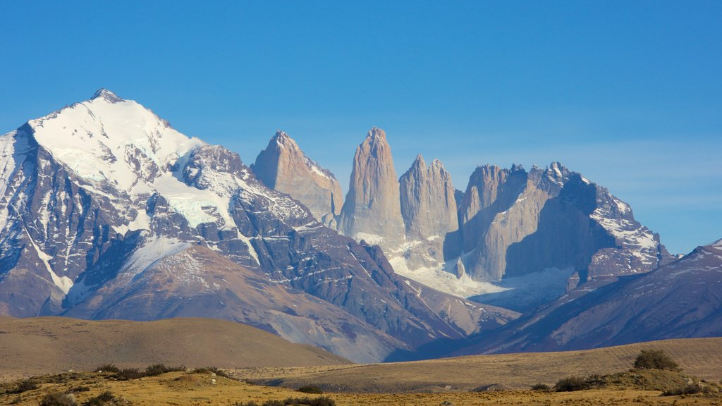 Torres del Paine National Park showing tranquil scenes, mountains and landscape views