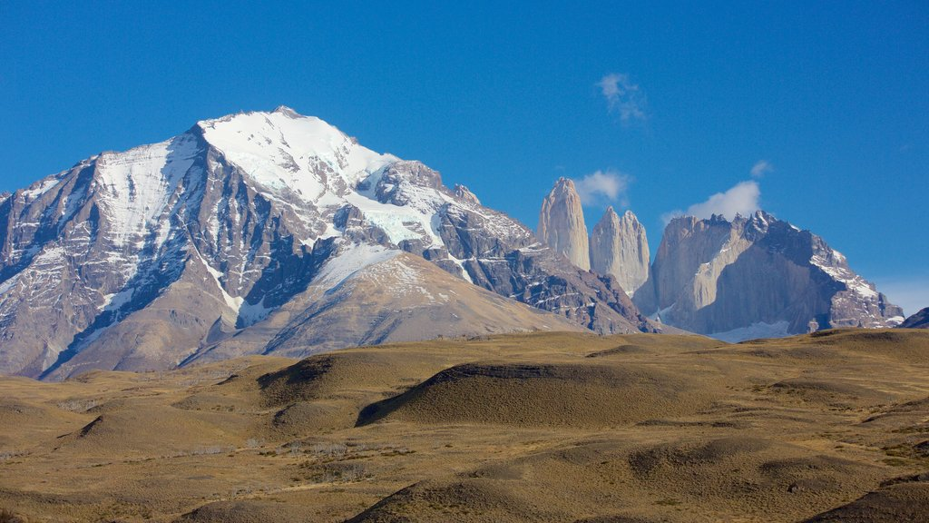 Torres del Paine National Park featuring tranquil scenes, landscape views and mountains