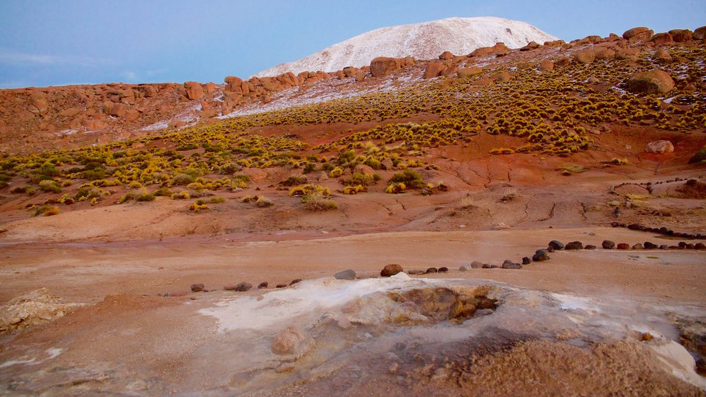 El Tatio Geyser Field which includes mountains and desert views