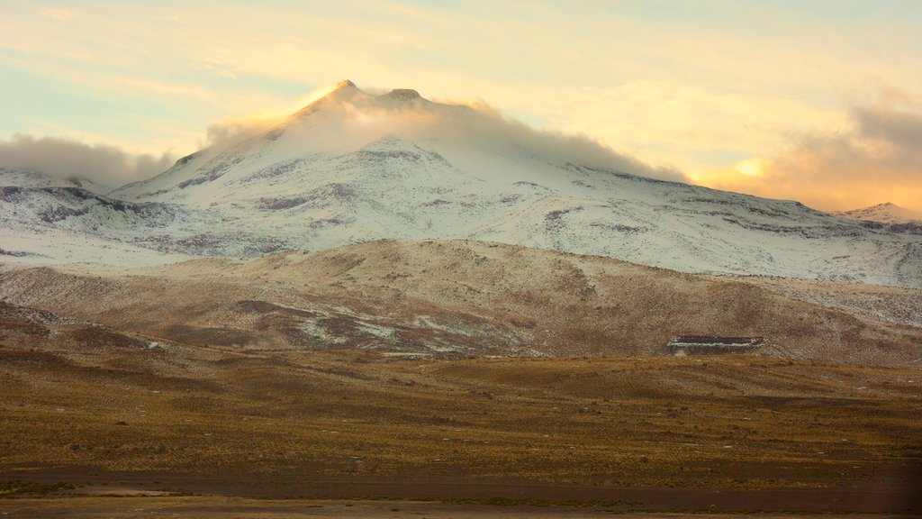 El Tatio Geyser Field showing mountains, desert views and a sunset