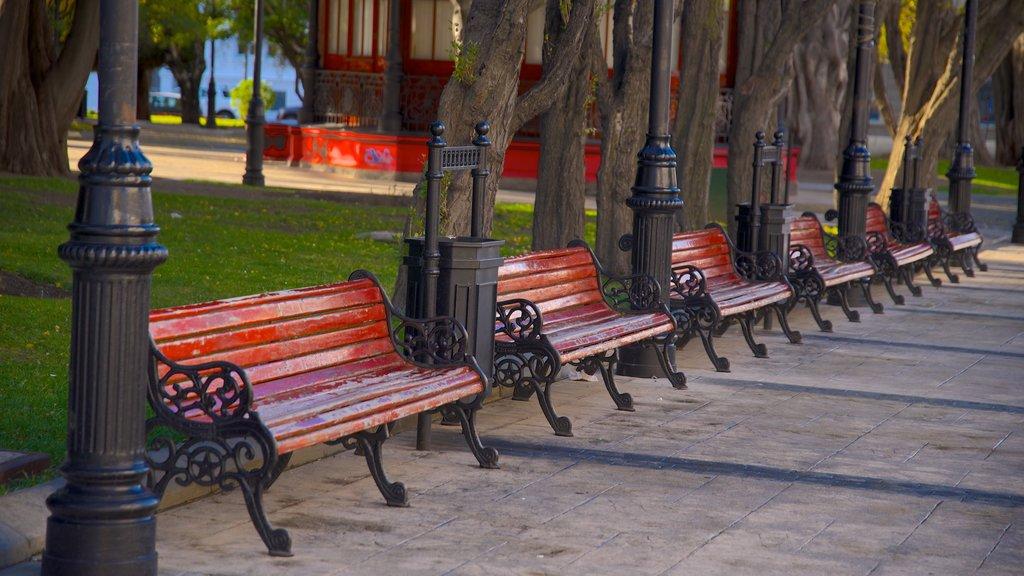 Plaza Munoz Gamero which includes a garden
