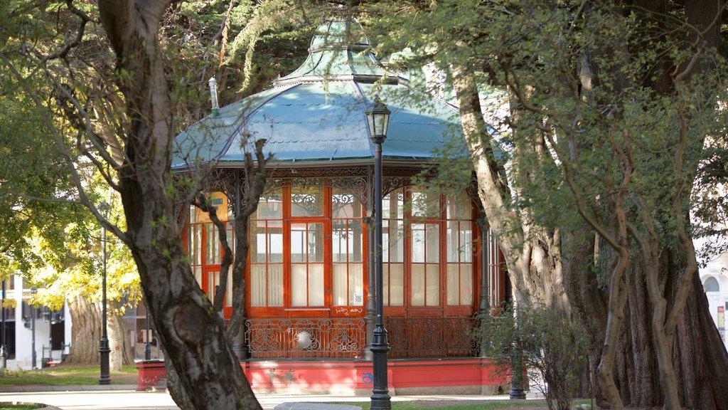 Plaza Munoz Gamero featuring a garden