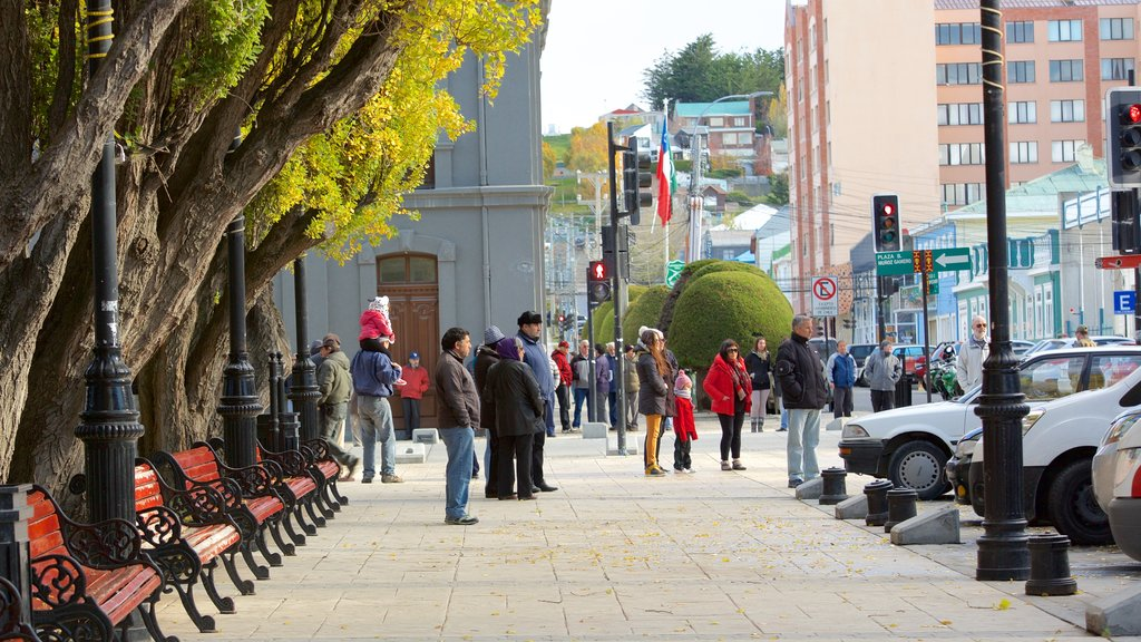 Plaza Munoz Gamero featuring street scenes and city views