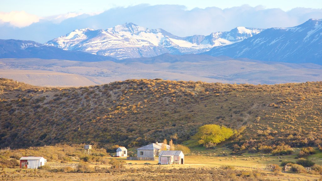 Torres Del Paine showing tranquil scenes and landscape views