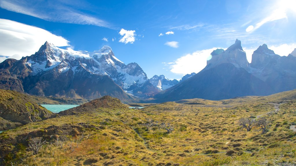 Torres Del Paine showing landscape views and tranquil scenes