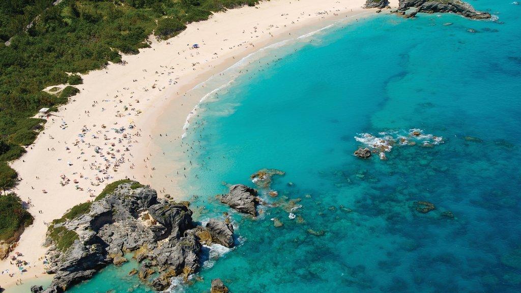 Bermudas que incluye una bahía o puerto, escenas tropicales y una playa de arena