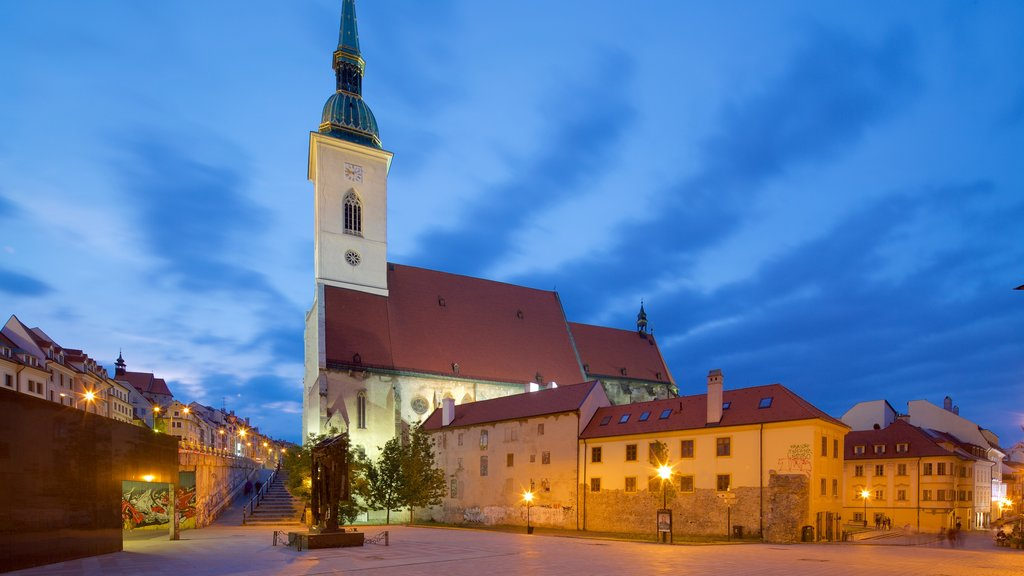 St. Martin\'s Cathedral showing a city and night scenes