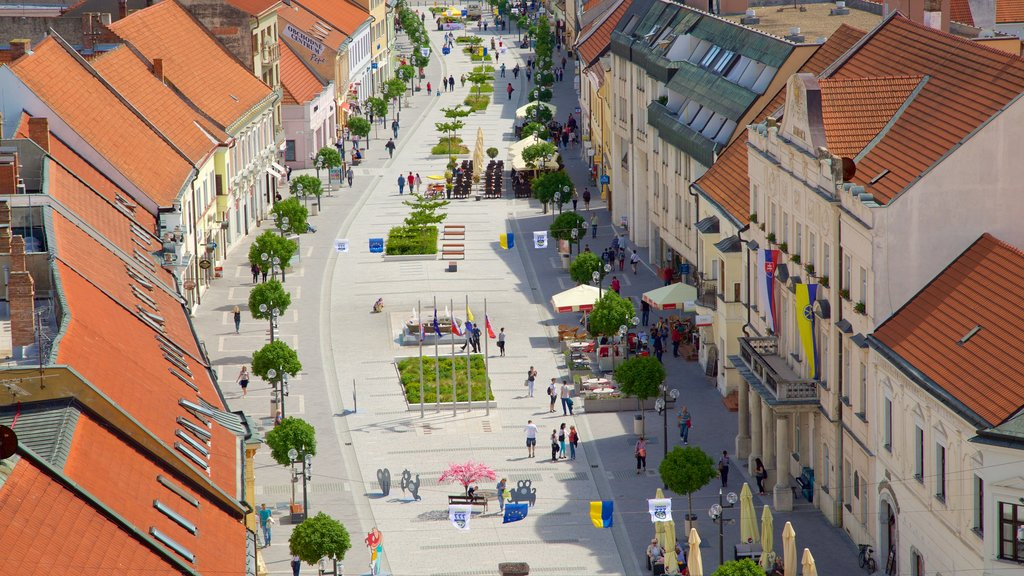 Trnava featuring a city and street scenes