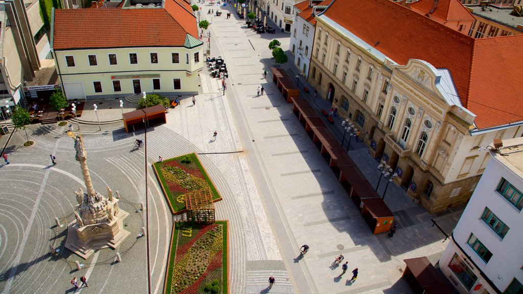 Trnava featuring a city, a square or plaza and street scenes