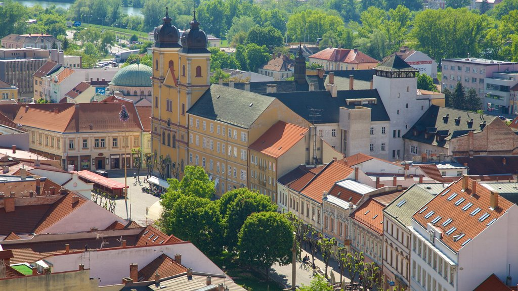 Trencin showing a city