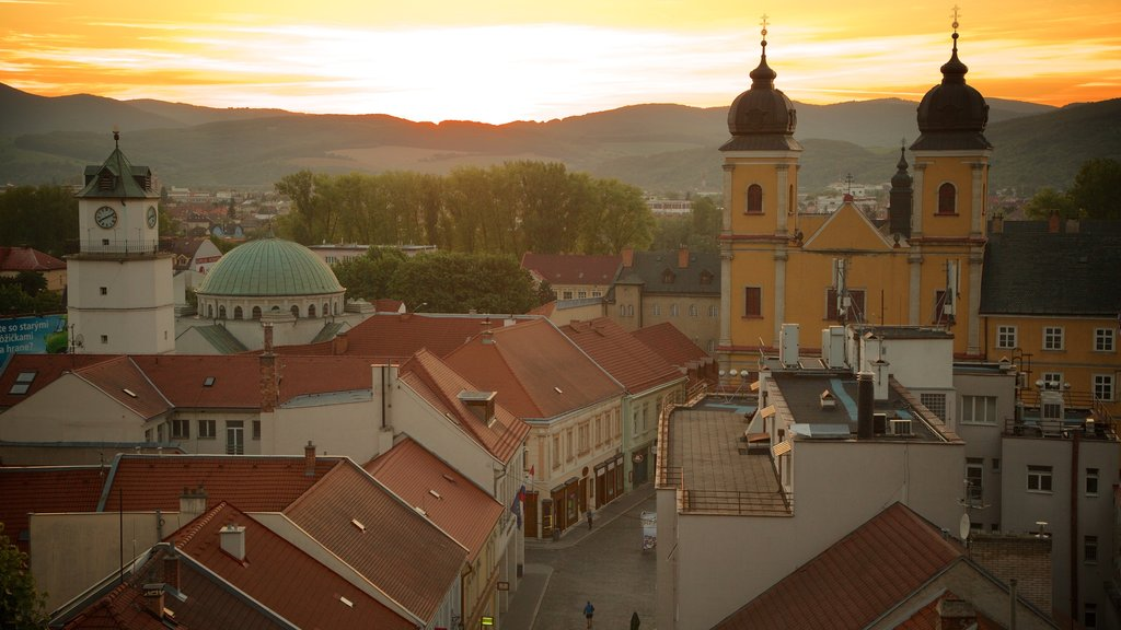 Trencin which includes a city and a sunset