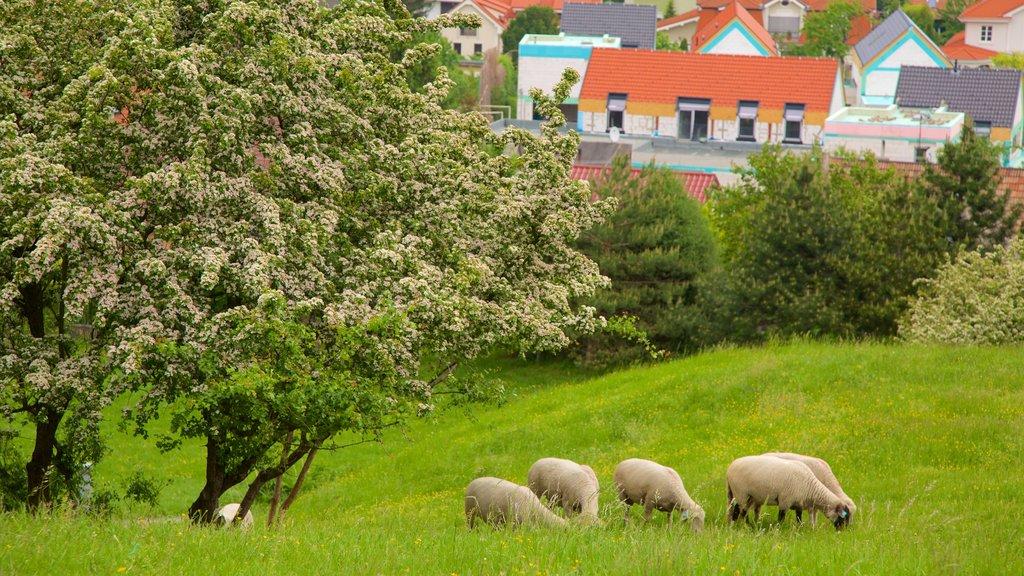 Devin Castle which includes a city and farmland