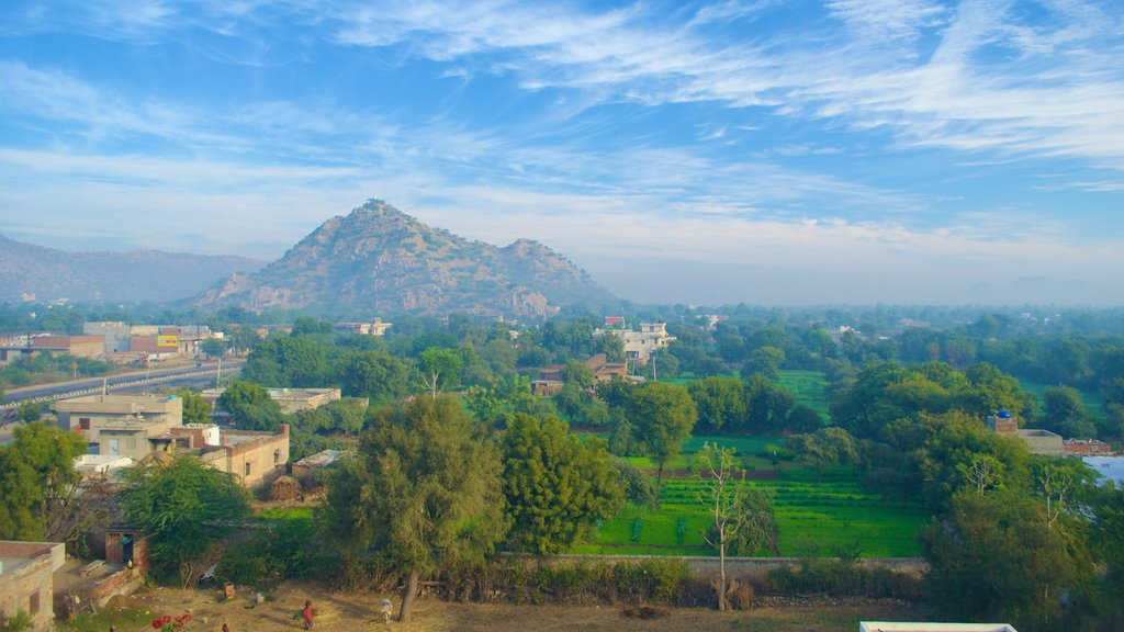Jaipur which includes mountains, farmland and a small town or village