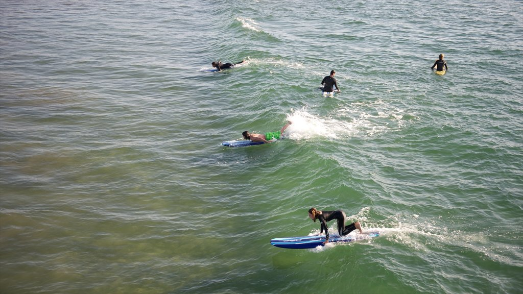 Venice Beach which includes surfing and general coastal views as well as a small group of people