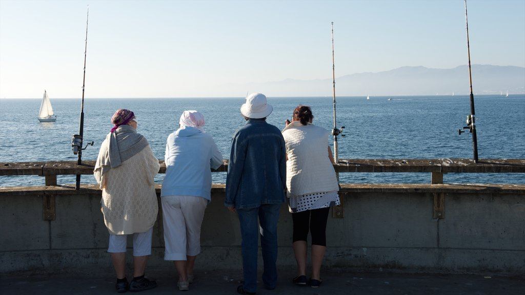Venice Beach which includes general coastal views and fishing as well as a small group of people