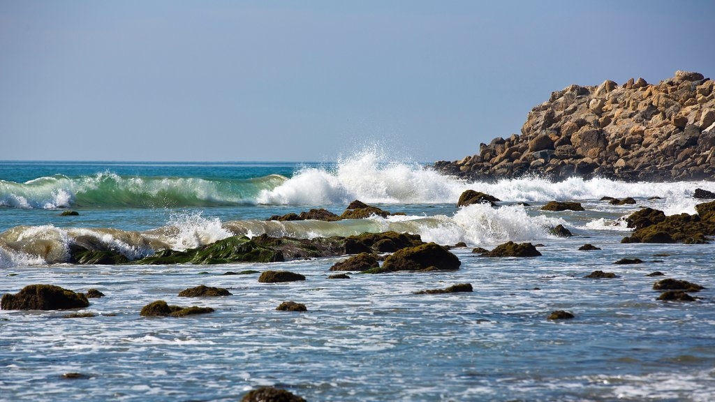 Malibu showing waves and rocky coastline