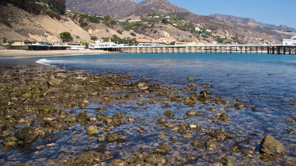 Malibu which includes a pebble beach, a coastal town and general coastal views