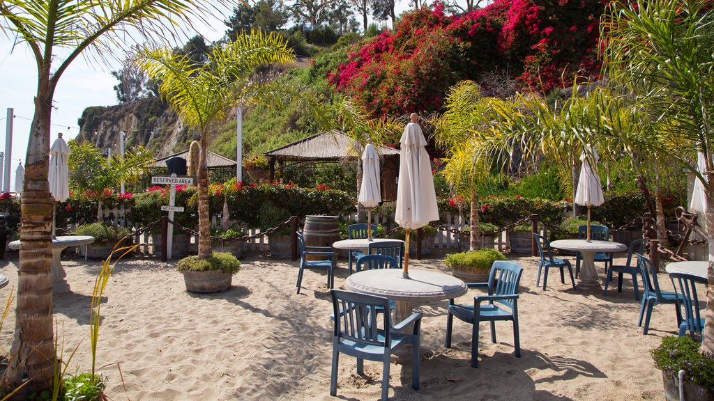 Malibu featuring a beach and outdoor eating