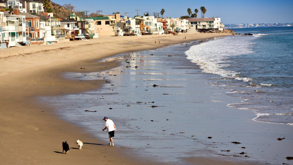 Malibu featuring general coastal views, a coastal town and a sandy beach