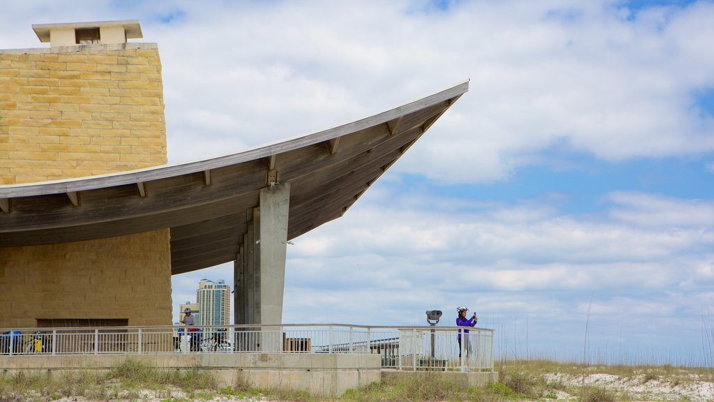 Gulf State Park showing views and modern architecture