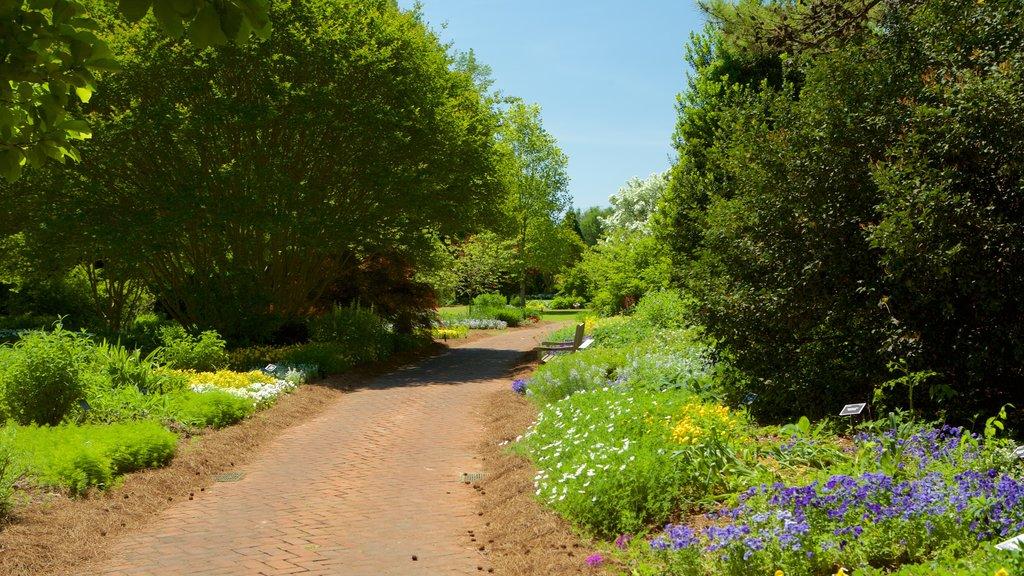 Huntsville Botanical Garden showing a park