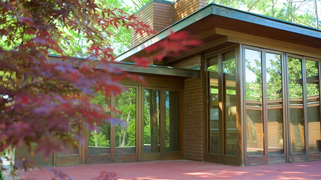 Frank Lloyd Wright Rosenbaum House showing modern architecture and a house