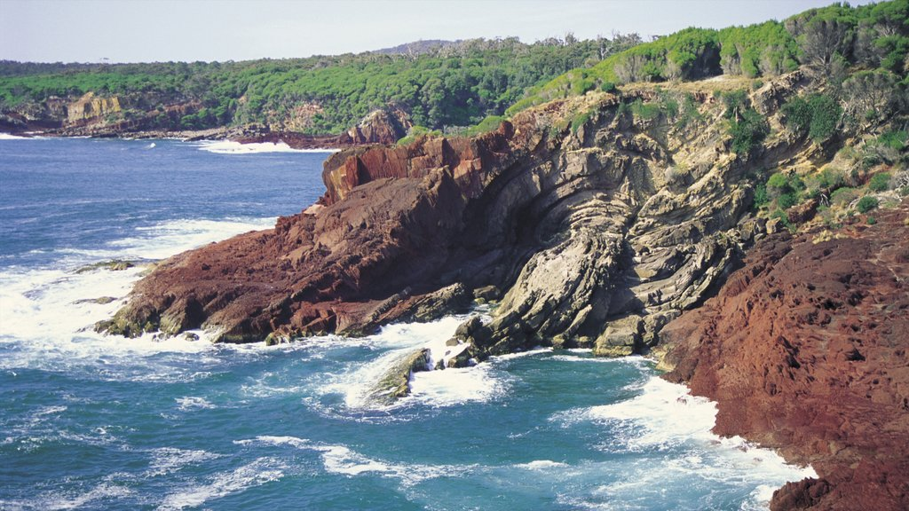 Eden which includes rocky coastline