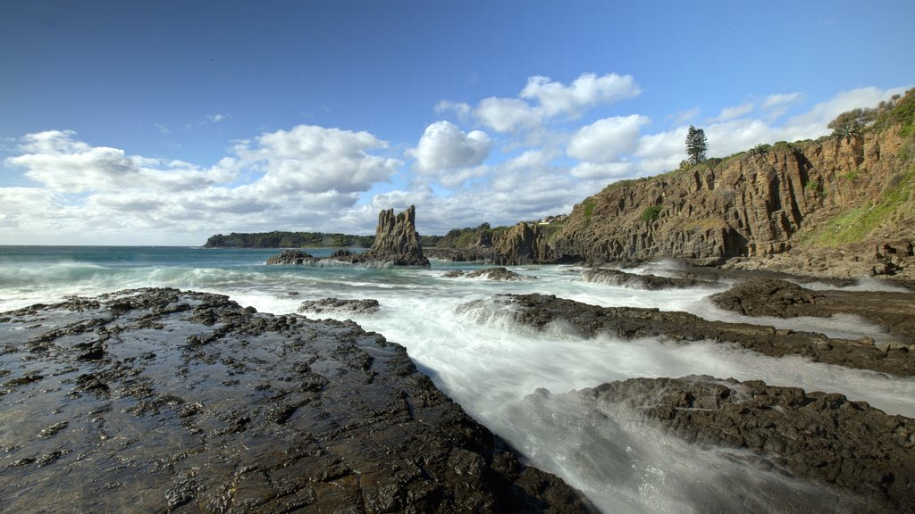 Kiama featuring general coastal views and rocky coastline