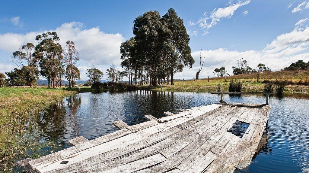 St. Helens que incluye un estanque y escenas tranquilas