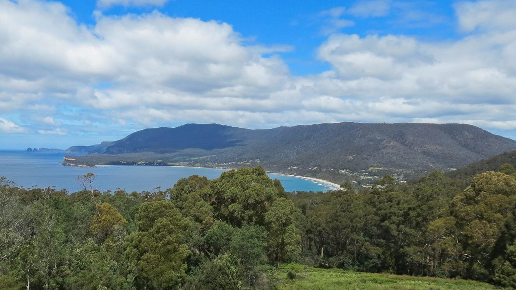 Eaglehawk Neck showing general coastal views, mountains and forest scenes