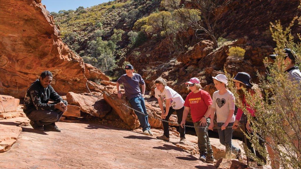 Uluru featuring desert views as well as children