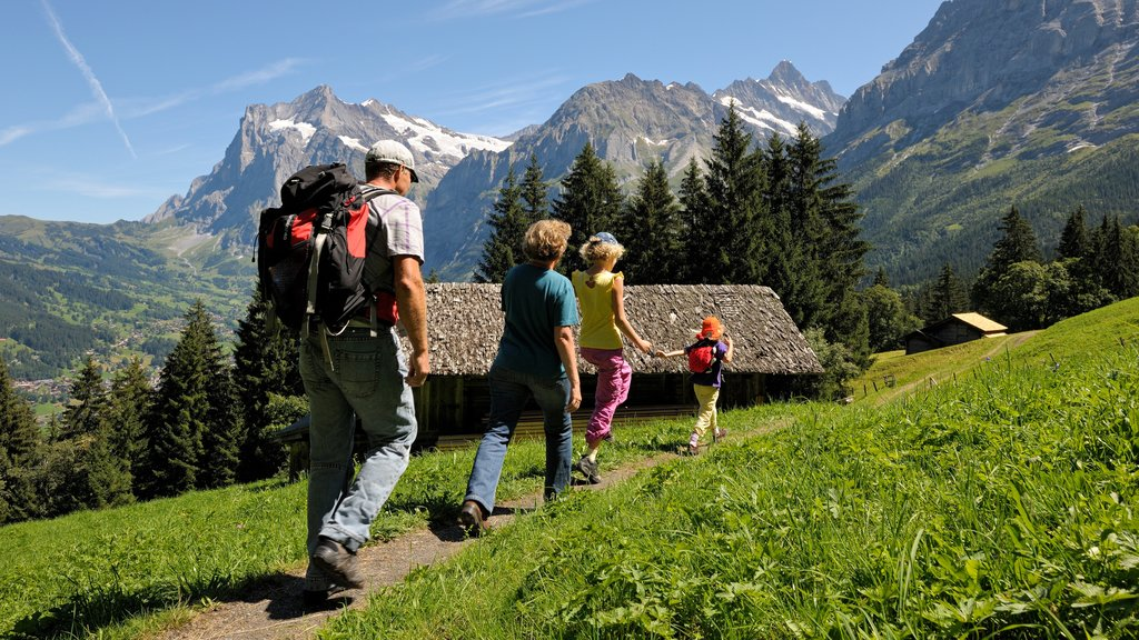 Lauterbrunnen which includes tranquil scenes and hiking or walking as well as a family