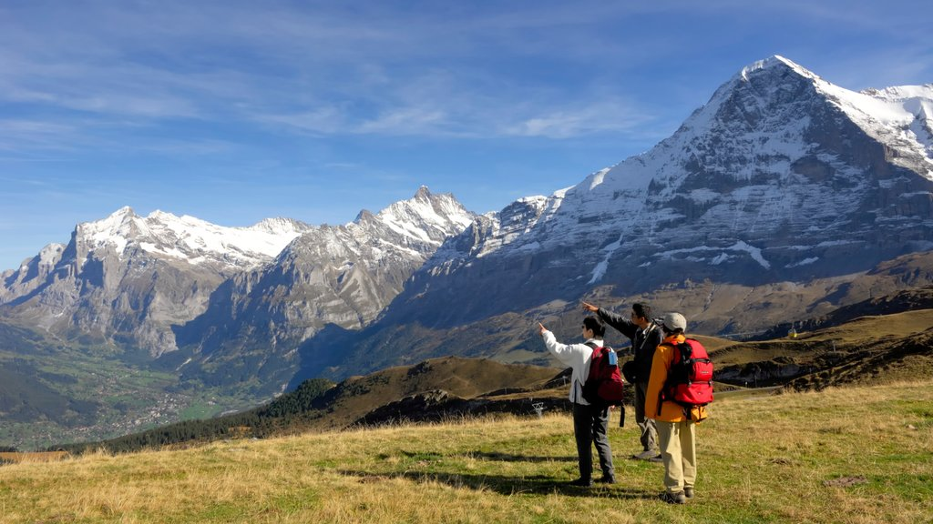 Lauterbrunnen featuring tranquil scenes and hiking or walking as well as a small group of people