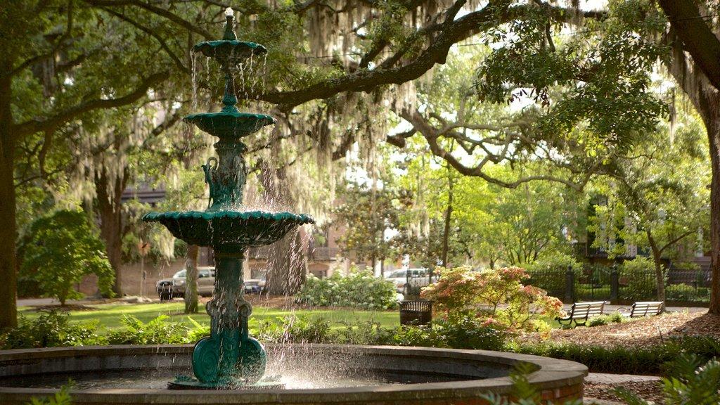 Plaza Lafayette mostrando un parque y una fuente