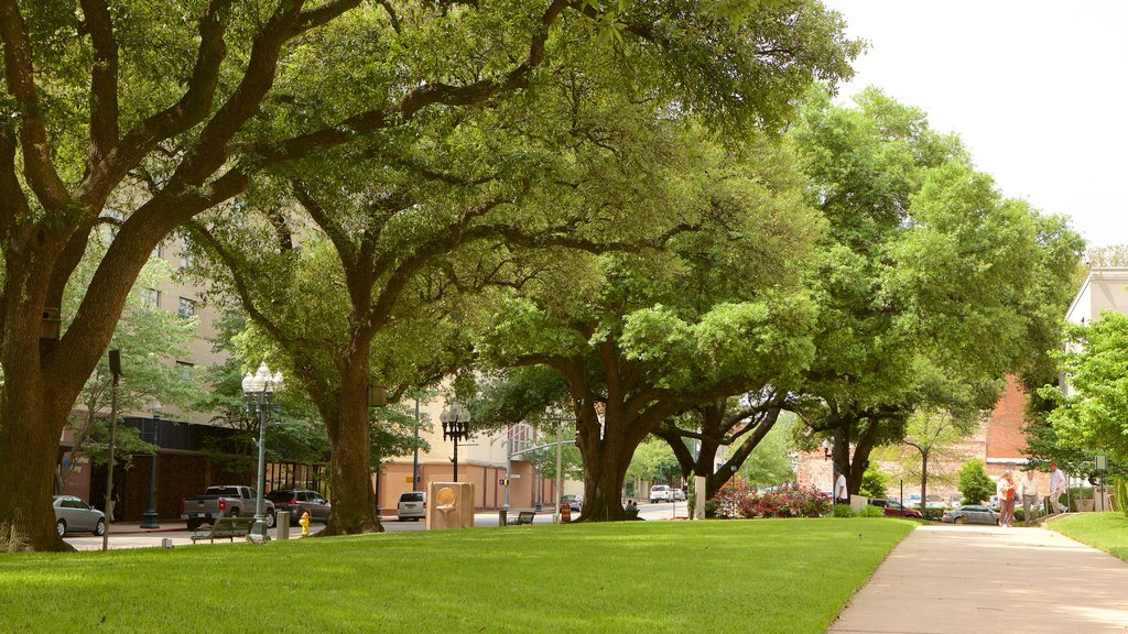 Shreveport featuring a park