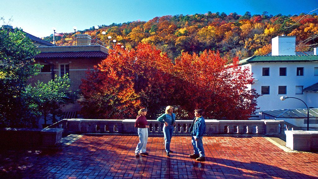 Hot Springs showing autumn leaves as well as a small group of people