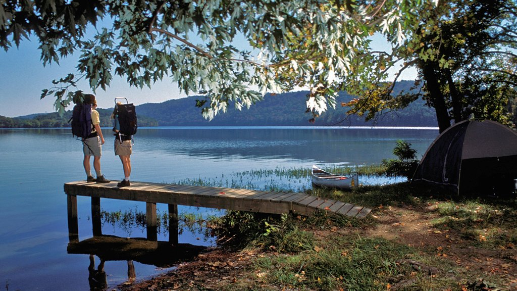 Hot Springs featuring a lake or waterhole and camping as well as a couple