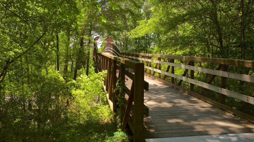 Ocmulgee National Monument which includes a bridge and forest scenes